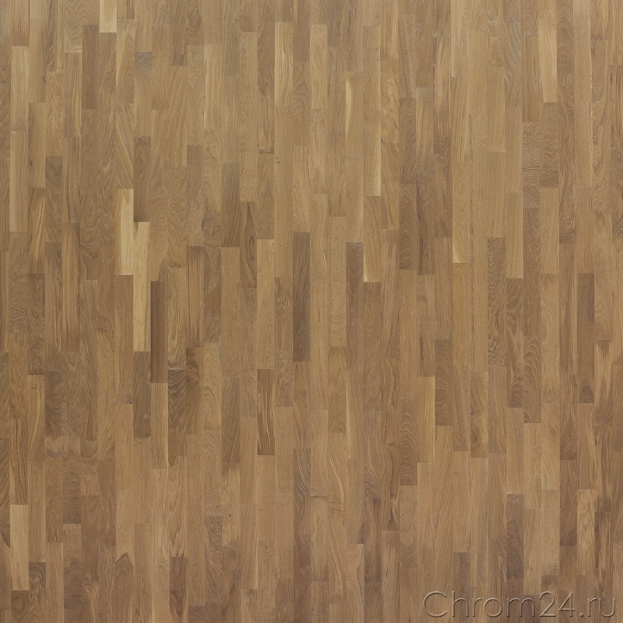 3S Oak Calima Oiled (Focus Floor)